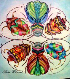 Besouros do Reino ANIMAL-Millie Marotta-By Silvia R.Cassol