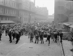 The 1st Life Guards parading before leaving for France. 1914