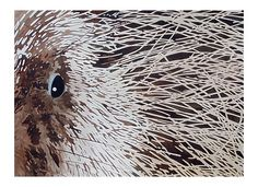 Ruth Tatter: Porcupine   WATERCOLOR
