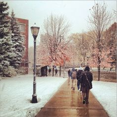 Campus in the winter time. Photo by Ciara Collins. See more photos from students at http://muexplore.tumblr.com/post/66707240107/scenes-from-the-first-snowfall-of-the-season-at