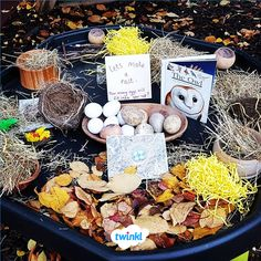Owl Tuff Tray and Small World Area. Make a nest in this lovely owl tuff tray and small world area, p Forest School Activities, Autumn Activities, Owl Activities, Preschool Garden, Preschool Crafts, Preschool Ideas, Reggio, Investigation Area, Investigations