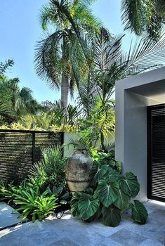 43 Beautiful Tropical Front Yard Landscape Ideas For Your Home #beautifulfrontyard #tropicalfrontyard #frontyardlandscaping ~ aacmm.com