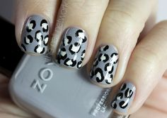 Snow leopard mani