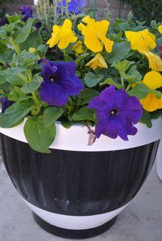 DYI Painted Flower Pots