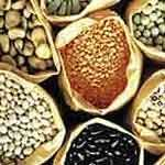 all preppers should read this.  Seed choice info: Important survivalist information about which seeds to save before society comes to a screeching halt.