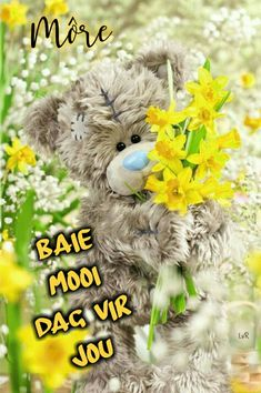 Lekker Dag, Good Morning Vietnam, Goeie Nag, Goeie More, Afrikaans Quotes, Bear Pictures, Good Night Quotes, Tatty Teddy, Good Morning Wishes