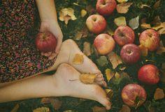 dear autumn