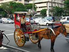 """Kalesa is a horse-driven carriage used in the Philippines. The word predates the Spanish conquest and descends ultimately from an Old Church Slavonic word meaning """"wheels."""" This was one of the modes of transportation introduced in the Philippines in the 18Th century. They are rarely used in the streets nowadays except in tourist spots and some rural areas. A kalesa looks like an inclined cart popularized during Spanish occupation as a method of transportation."""