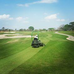 "@miguelmarincasero's photo: ""Getting ready for the #LexusPanamaClassis at @buenaventuragc @lexuspanamaclassic #pgatourla #pgatourlatinoamerica #Buenaventuragolfclub #Buenaventura #golf #golfpanama #tournament #pro"""