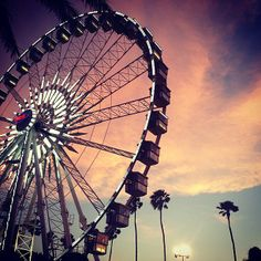 Coachella! | Our 2013 Instagram Diary