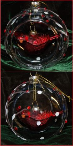 Cardinal Inside Glass Dome for Special Lady Christmas Ornament Personalized New for Winter 2014