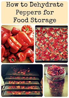 Dehydrating is one of the easiest and best food storage methods; preserve your harvest and keep all of the vitamins and minerals intact! How to dehydrate peppers for food storage, an alternate way from canning and freezing to preserve your summer harvest. Dehydrated Vegetables, Dehydrated Food, Veggies, Canning Food Preservation, Preserving Food, Plat Vegan, Canned Food Storage, Fridge Storage, Long Term Food Storage