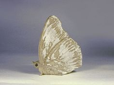 Ceramic Butterfly Sculpture by Andersen Studio of Maine, White matte ...