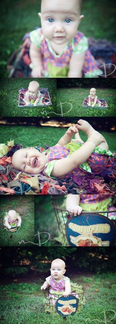 6 Month Baby, Molly Dockery Photography, Asheville Photographer