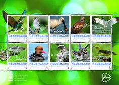 Postzegelvel Zomervogels