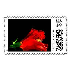 Red Hibiscus Floral Postage Stamp