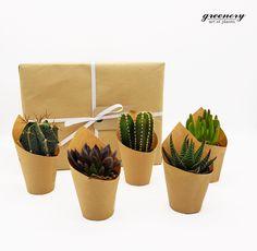 Βρες τα νέα μας kit με παχύφυτα και κάκτους και ξεκίνησε τη συλλογή σου! Shop now: www.greenery.gr 📦📦📦