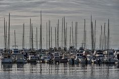 Photograph by Stuart Litoff.  #Rows of #boats in the #Izola #marina, an old #Slovenian #fishing #town on the #Adriatic #coast of the #Istrian #peninsula.