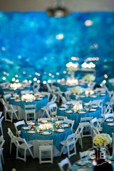 Seattle Aquarium Events