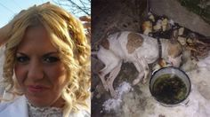 Belgrade, Serbia: Punish mother of two that left family dog to freeze outside until it passed away! Animal Petitions by YouSignAnimals.org. Sign the Petition here: http://www.yousignanimals.org/Belgrade-Serbia-Punish-mother-of-two-that-left-family-dog-to-freeze-outside-until-it-passed-away-t-1109 I signed.