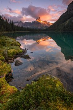 First light on Cathedral Mountain. First light grazes the peak of Cathedral Mountain. Taken along the shore of beautiful Lake O´Hara in Yoho National Park as Landscape Photos, Landscape Photography, Nature Photography, Digital Photography, Photography Tips, Travel Photography, Nature Pictures, Cool Pictures, Beautiful Pictures