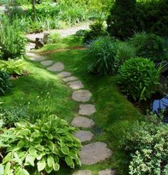 I love this winding path!  I am going to have to make a stone path in my back yard this year.
