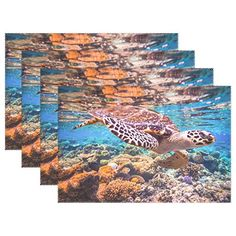 Pimpernel Wrendale Placemats - Set of 4 (Large) Portmeiron https ...