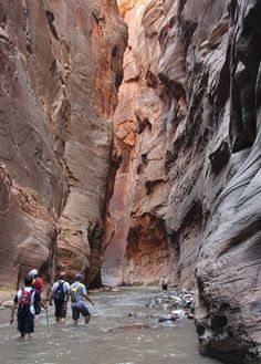 World's greatest Hikes: Zion National Park, Utah, USA: The Zion Narrows    (photo by gregfoster)    This 16-mile hike follows a trail beside a slot canyon, meaning a good portion of it takes place in a river. You'll come across red cliffs, waterfalls and interesting geological formations. You can tackle the trek in one day or decide to sleep under the stars and take two days to finish it and enjoy the wonderful desert scenery.