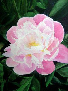 Картины (живопись) : Пион