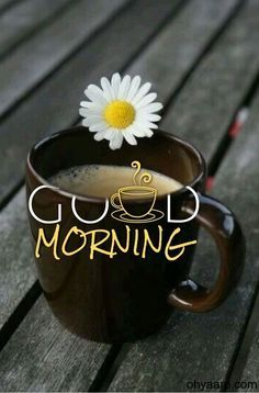 Latest Good Morning, Good Morning Images Hd, Good Morning Coffee, Good Morning Picture, Good Morning Friends, Good Morning Flowers, Good Morning Good Night, Morning Pictures, Good Morning Wishes