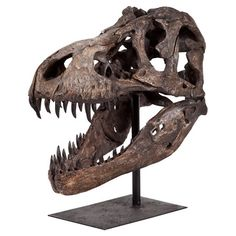 Perfect as a handsome focal point or in a nature-inspired vignette, this realistic dinosaur skeleton sculpture lends a historic touch to your decor....