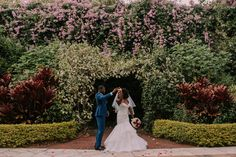 Sunken Gardens Wedding - St. Pete Wedding Photographer