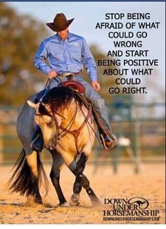 Clinton Anderson is a clinician, horse trainer and competitor. He's dedicated his life to helping others realize their horsemanship dreams and keeping them inspired to achieve their goals. The Downunder Horsemanship method of horse training is based on Clinton Anderson, My Horse, Horse Girl, Horse Love, Horse Tack, Pretty Horses, Beautiful Horses, Cowboy Quotes, Rodeo Quotes