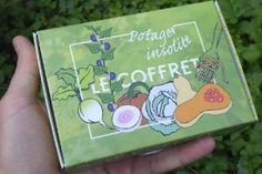 Semis en intérieur : Le potager se prépare dès février ! | Blog Jardin Alsagarden - le magazine des jardiniers curieux