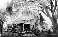 Historic Peace River Valley, Florida: Battle of Bowlegs Creek: Fort Meade, Florida, April 7, 1864