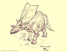 lostbeasts:    isabelaesthete:    Anchiceratops Sketch by ~Red-Dilopho    wwowow i love this style
