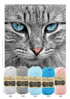 Scheepjes Merino Soft kleurinspiratie pakket Cat