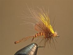 Haystuck Emerger SBS | Washington Fly Fishing