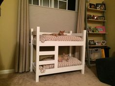 My dad built my sister's cats bunk beds. And they actually use them - Imgur