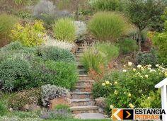 Escadas e Degraus Externos - Mais de 200 Moledos