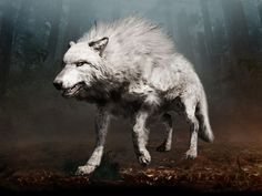 I got: Wolf! What Is Your Pre-Historic Spirit Animal?