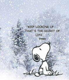 'Keep looking up... That's the secret of life.' (Snoopy)