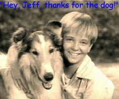 Lassie and Tommy Rettig as Jeff Miller