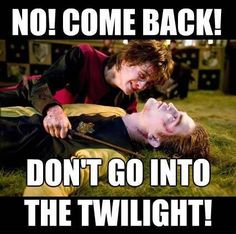 Okay, this may be amusing, but we can all agree, hopefully, that Cedric's death was very serious. Just look at Harry, guys.