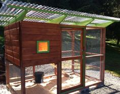 Send in photos of your chicken coop (earn a $10 Amazon gift card!) - Queen Bee Coupons & Savings