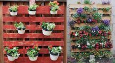 Idee per arredare un balcone piccolo - Pareti di piante in balcone