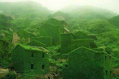 Quand la nature reprend ses droits dans un village abandonné (Chine) - Image