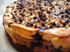 Turtle Cheesecake - one of the easiest and best cheesecakes I've ever made. the-girl-who-ate-everything.com