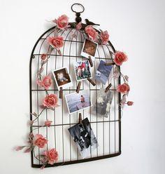 Birdcage Display