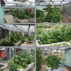 space need for Aquaponics Systems